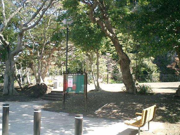 02)鎌倉市「材木座たぶの木公園」